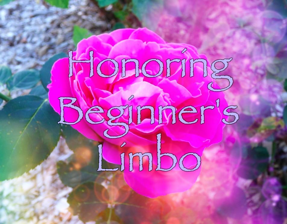 Honoring Beginner's Limbo