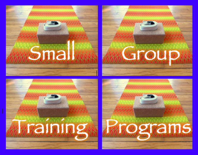 Small Group Yoga Training